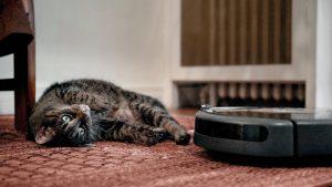 Aspirateur Robot Roomba 606